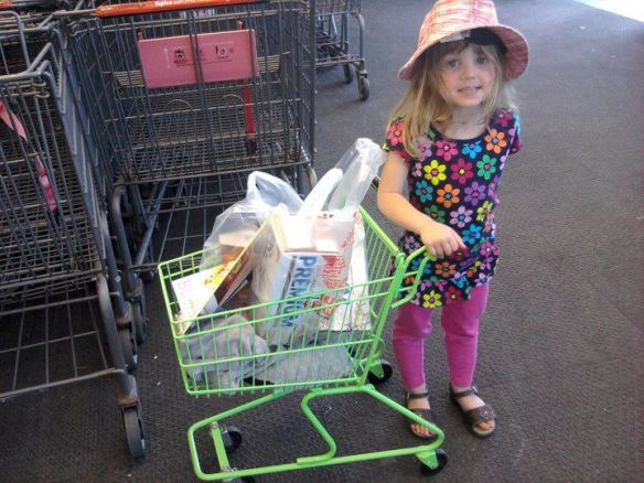 She prefers Hy-Vee for the cart selection.  Like this one...