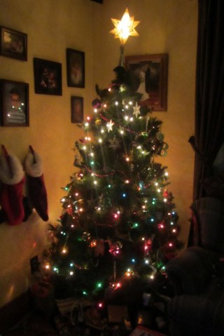 The Mediocre Christmas Tree