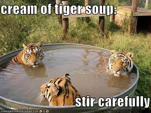 Aw dang it, this recipe is for TIGER soup!  I only have leopards.