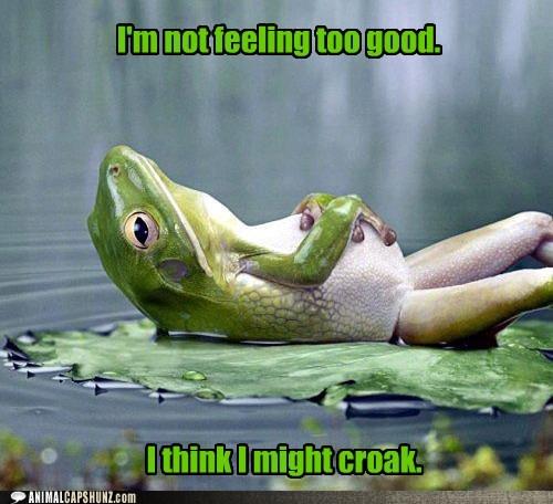 frog croak