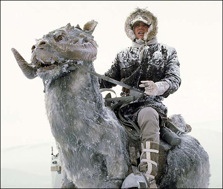 I don't actually own a Taun Taun.
