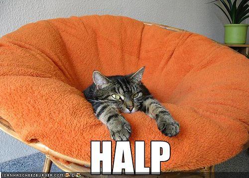 "I ""halped"" out."