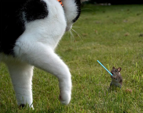 lightsaber mouse