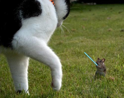 lightsaber mouse
