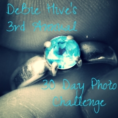 debie hive 30 day photo challenge