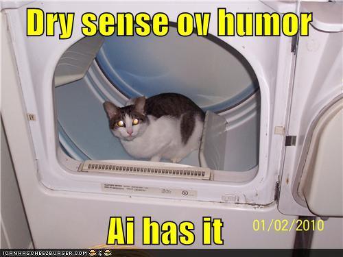 dry-sense-of-humor-lolcat