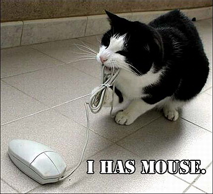 Remember there are no funny pictures of flaming laptops.  But mice...