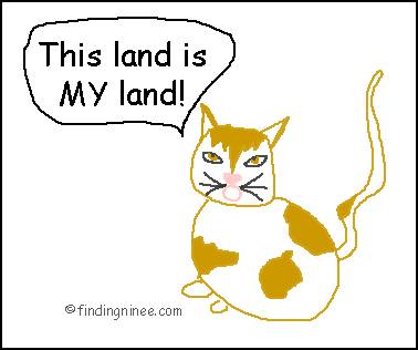 my land kitty