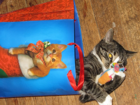 Where else do you play with catnip mice but in a Christmas kitty bag?