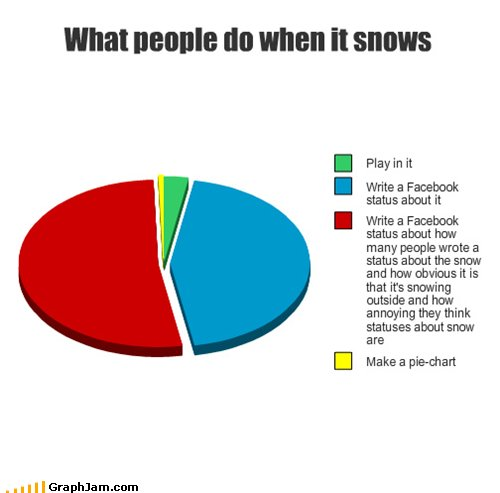 snow pie chart