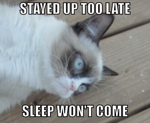 grumpy cat no sleep
